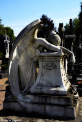 Angel of grief... by marcuspropostus