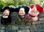 Team 7 - upside down