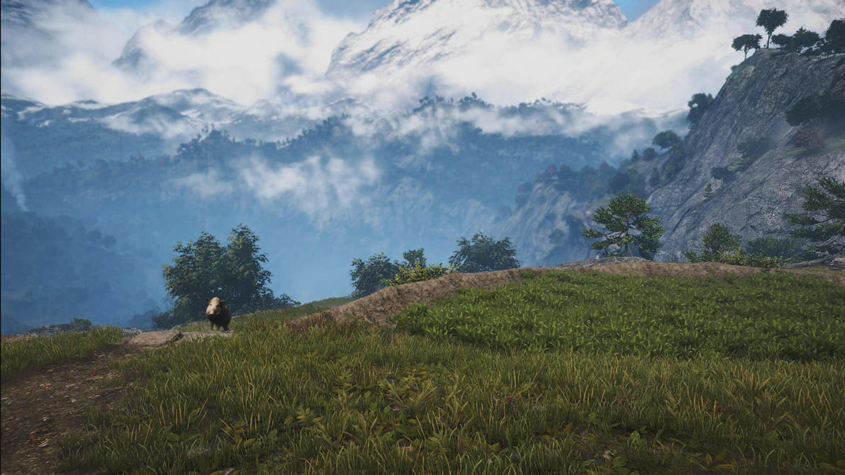 Far Cry 4 Grasslands Dreamscene 01 by droot1986