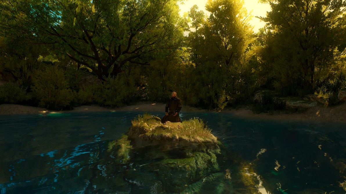 Witcher 3 Shy Monk Dreamscene by droot1986