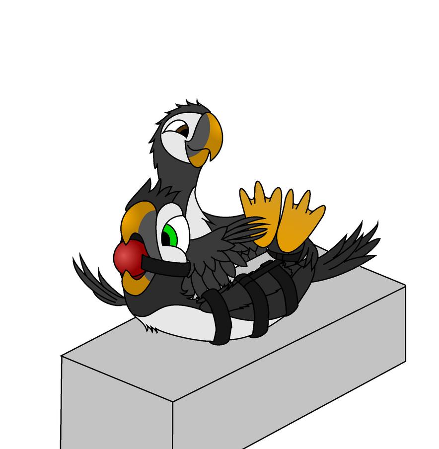 Puffin bird tickle by Trela1