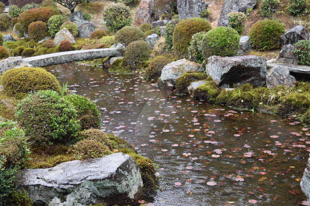 Small Pond by Muse-4-Life