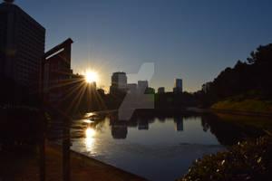 Sun In The City