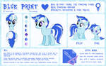 Blue Print Reference Sheet