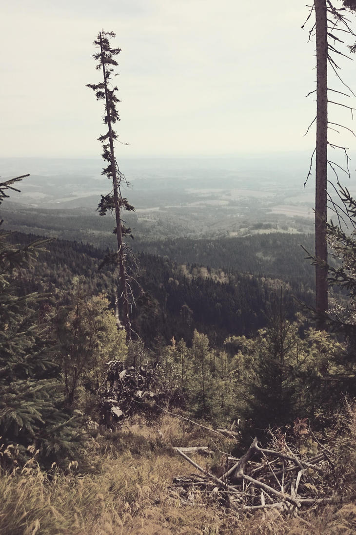 View from Black Mountain by kraah4