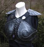 Highelf Shadowwarrior armour
