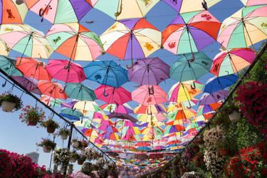 Swarm of umbrellas