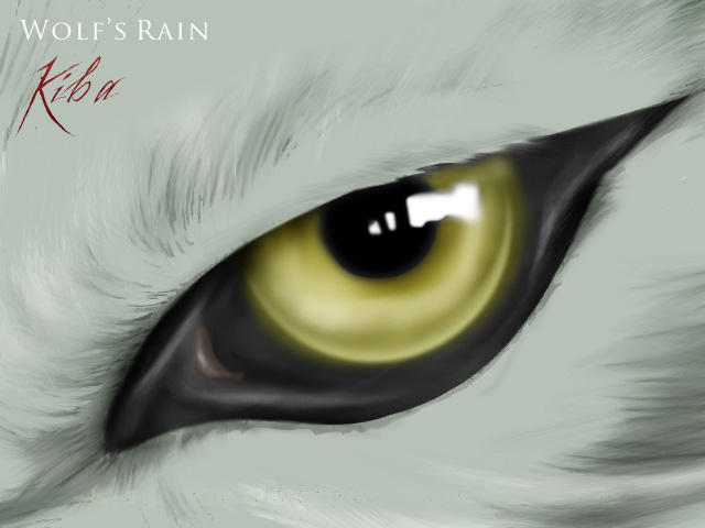 Kiba's eye by euronymus
