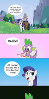 About Spike and Rarity