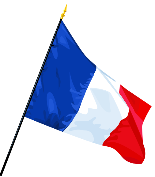 [Image: French_Flag_by_Troyenne.png]