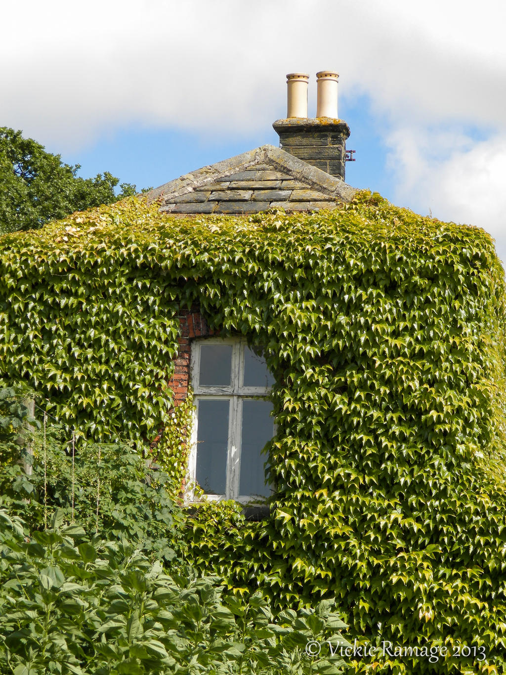 Window harewood house uk by vickiedesigns on deviantart for Harewood house garden design