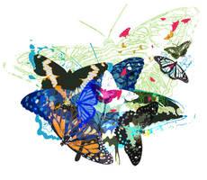 butterflys by dumdumjk