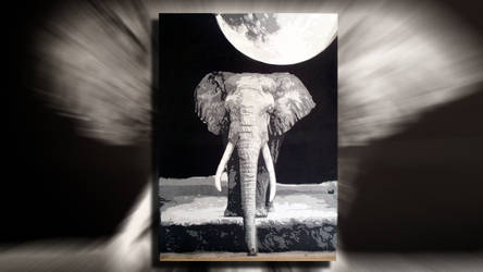 Elephant Multilayer Stencil Art