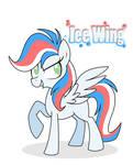 New Ice Wing pony
