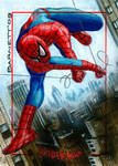 Spider-man Archives