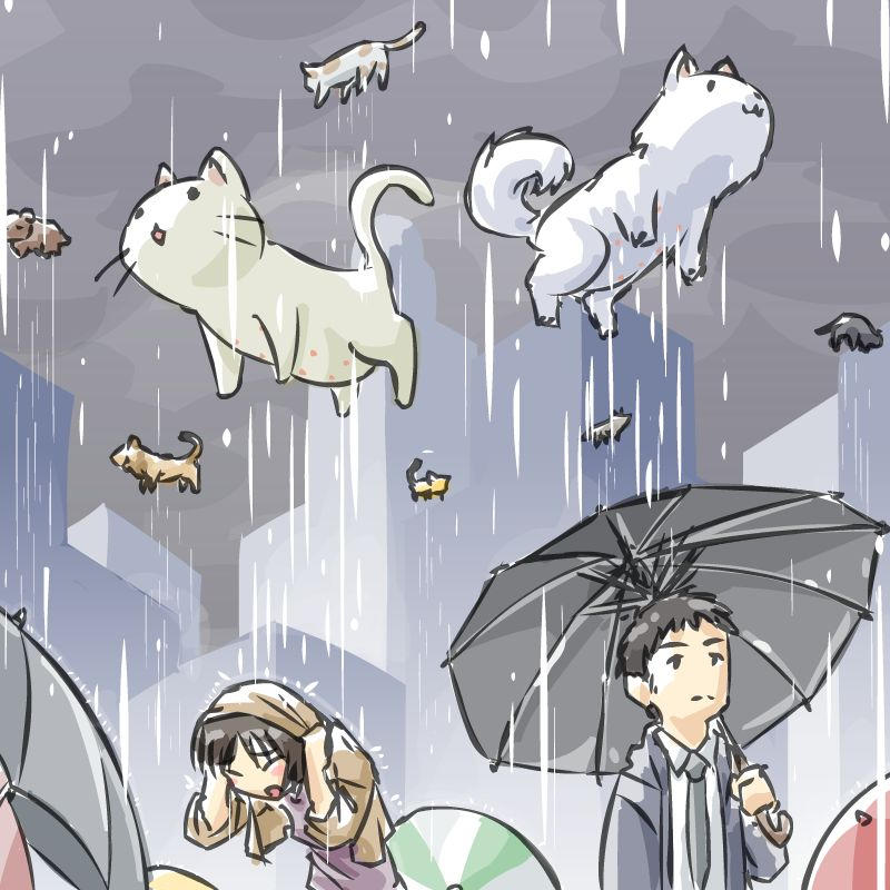 Raining Cats and Dogs by JohnSu