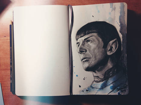 Goodbye Mr.Spock
