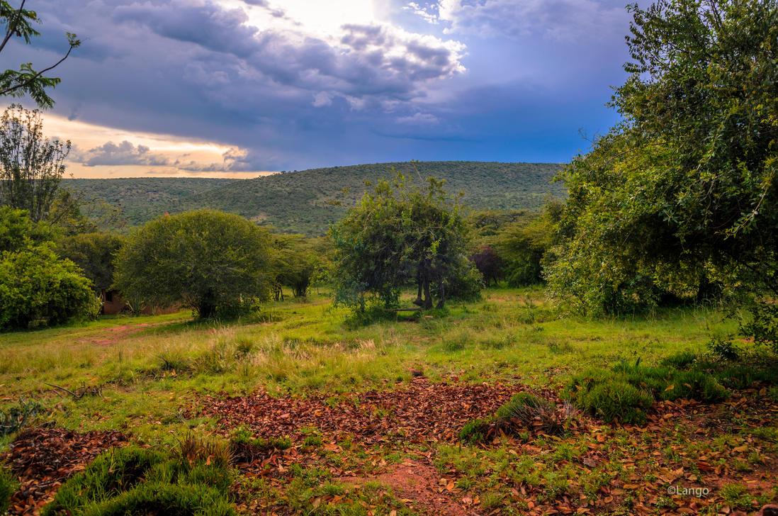 Landscape in the Massai Mara by Lango77