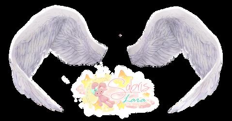 Png0030 Grandes Alas Angel by Sabris89