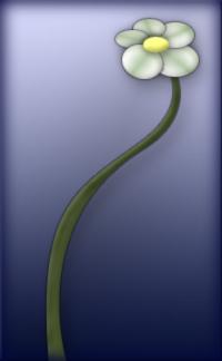 Flower by Nemrod10