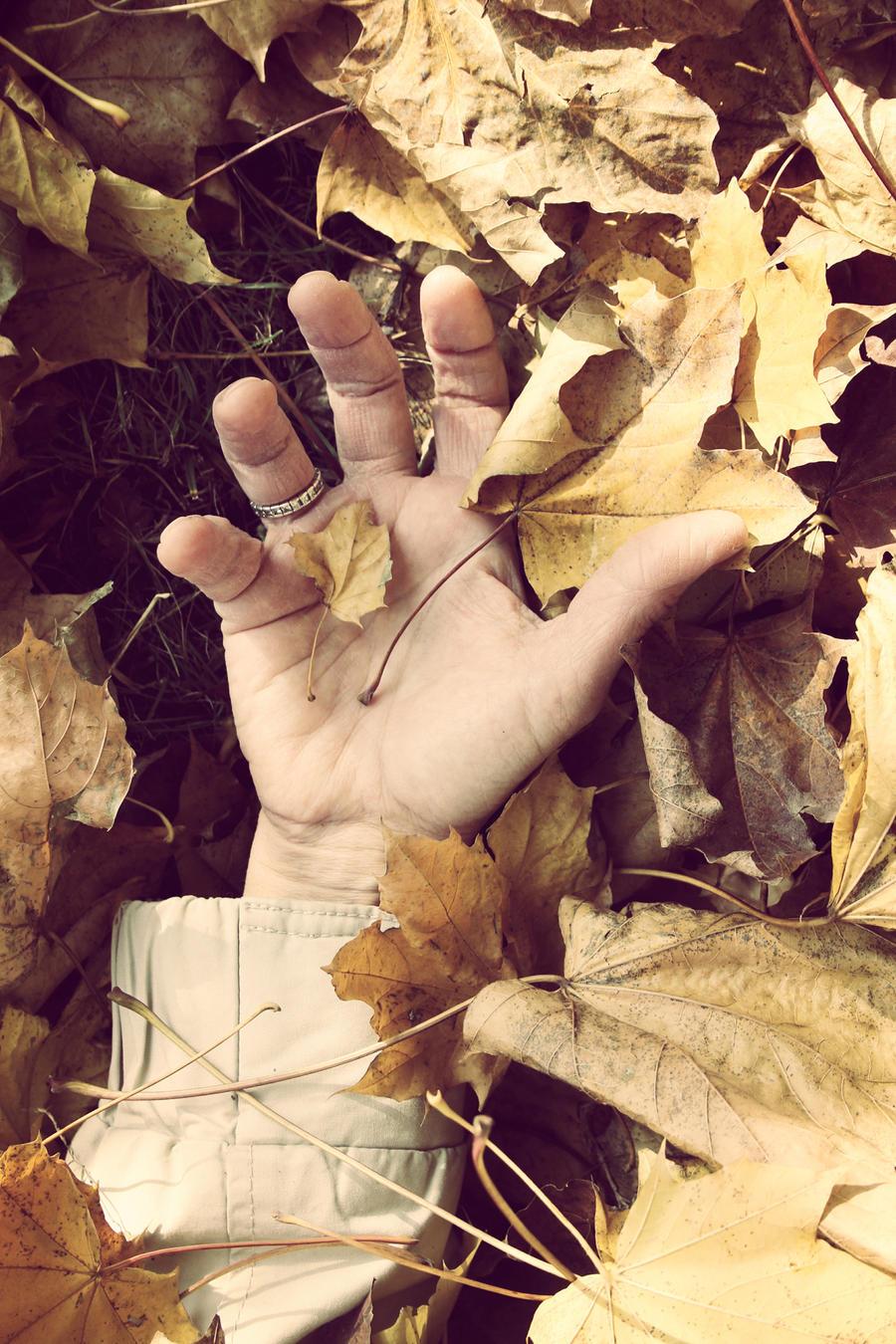 Under the golden leaves by Martigot