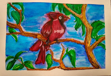 Watercolour Cardinal by Fullmetalwinry