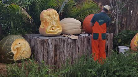 Farmer Mike's Pumpkin Carvings 2016 by blah1200