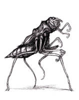 Lovecraft - Sentinent Beetle Descendant by KingOvRats