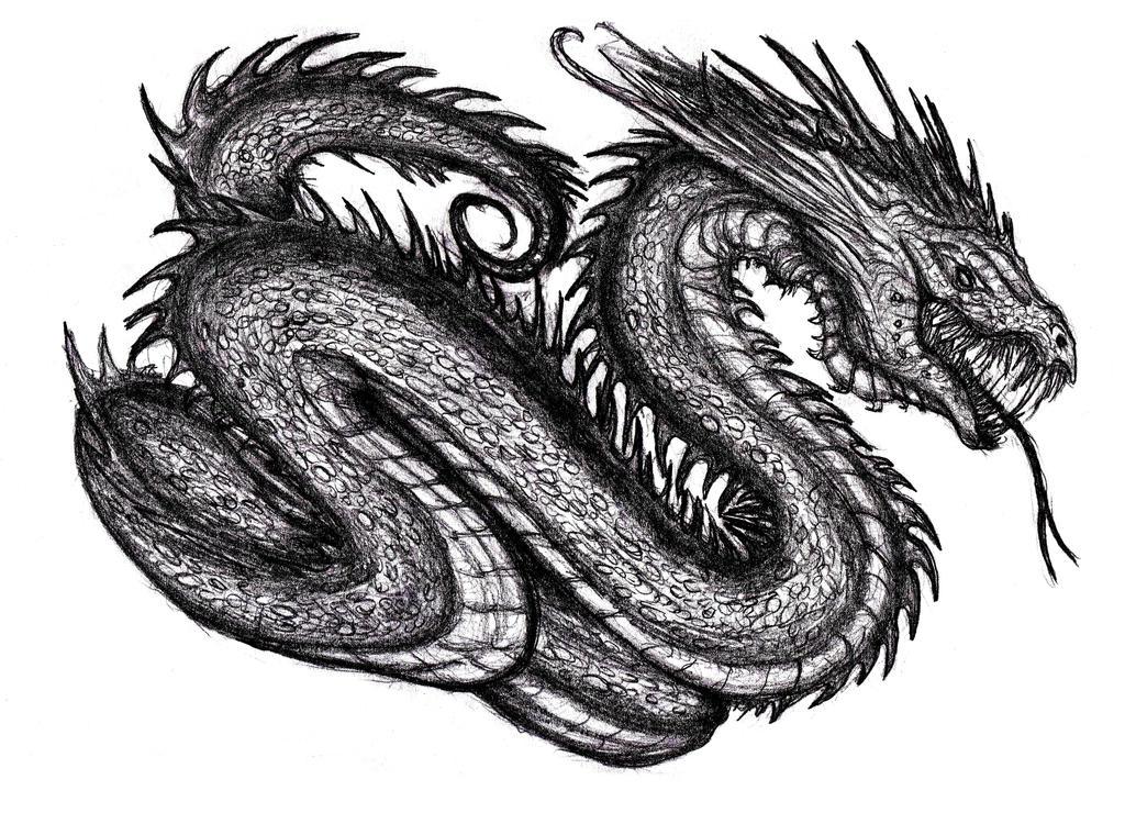 nidhogg dragon norse - 736×539
