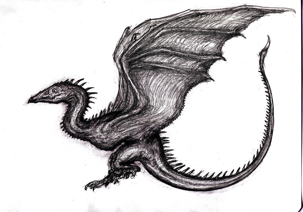 Wyvern Dragon: Dragon, Wyvern VIII By KingOvRats On DeviantArt