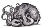Kraken, Giant Octopus, St Augustine Monster