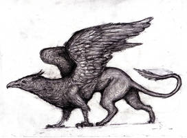 Griffin by KingOvRats