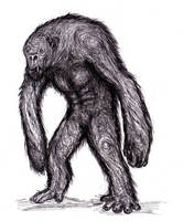 Monstrous Ape, Various, Cryptid by KingOvRats