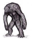 Monstrous Ape, Various, Cryptid