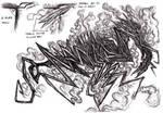Cthulhu Mythos - Hound of Tindalos by KingOvRats