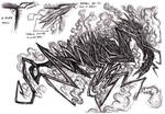 Cthulhu Mythos - Hound of Tindalos