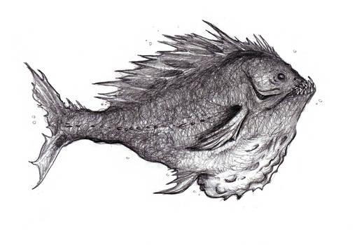 Dream Predatory Fish