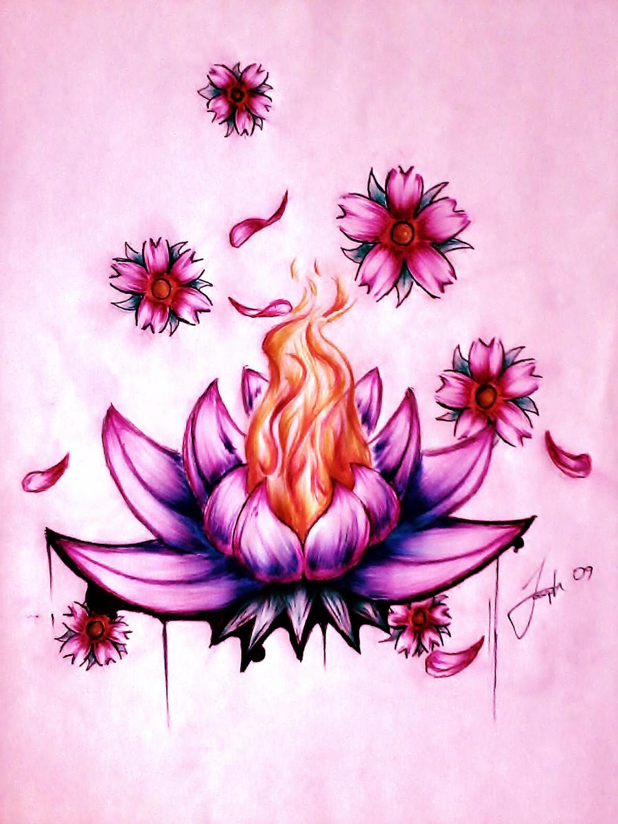 Lotus Flower Images Drawings | www.imgkid.com - The Image ...