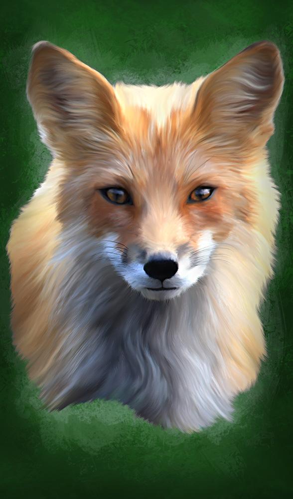 Fox Full by TRINRT