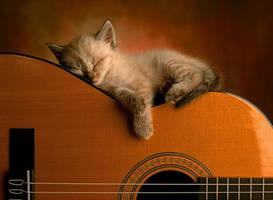 Rest little kitten. by RayFlower