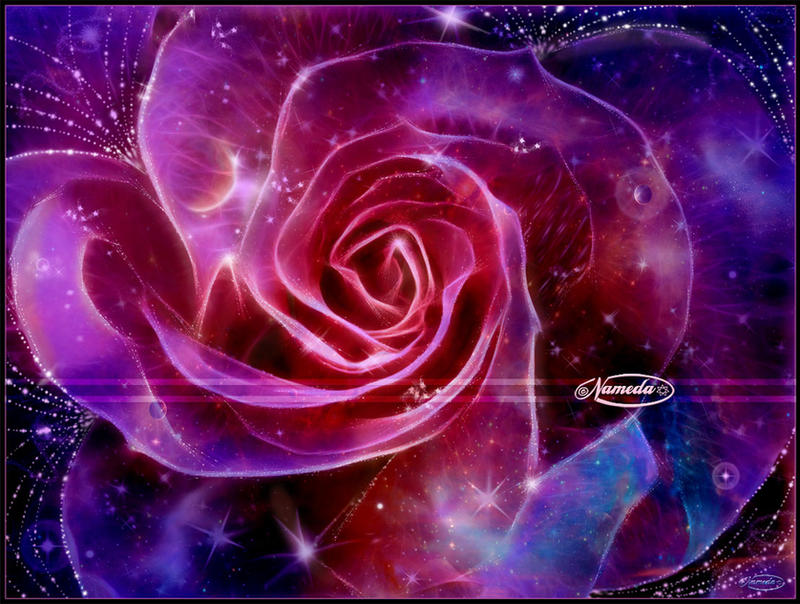 A rose for Krsna or Galaxy Rose by Nameda