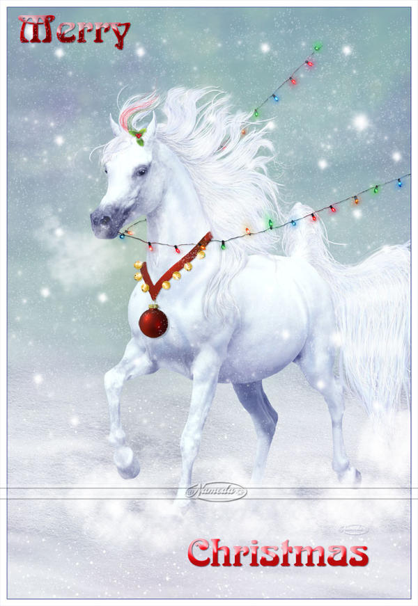 Merry Christmas Horse By Nameda On Deviantart