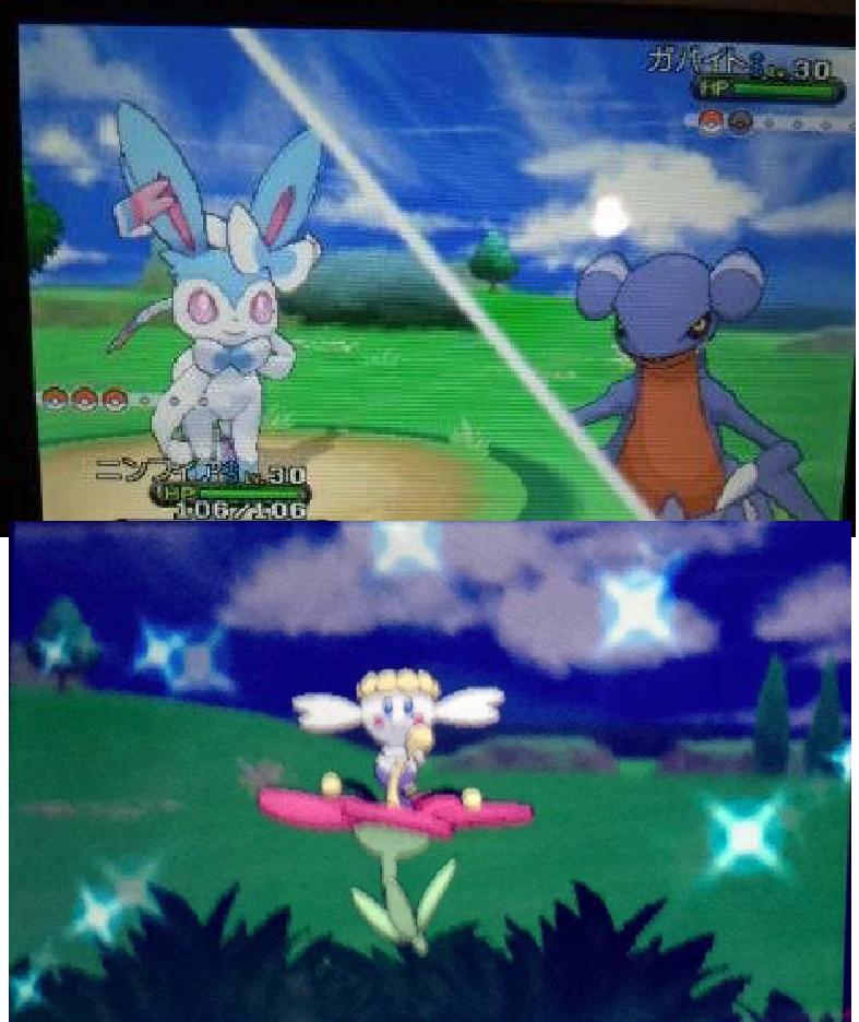 someone got some shiny pokemon in the demo by Tashiyoukai on
