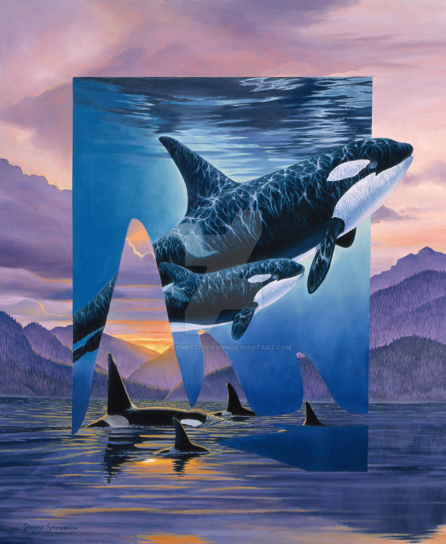 Orca Song by Graemestevenson