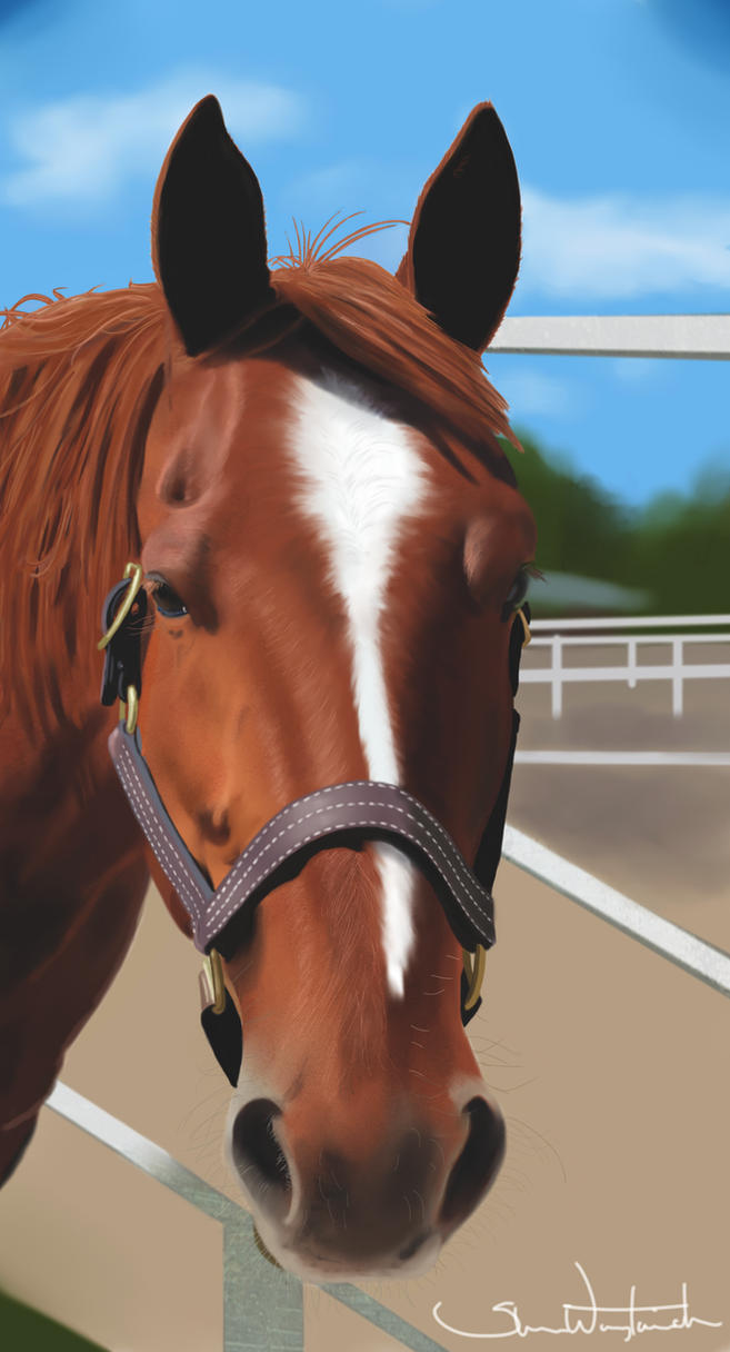 Horse commission portrait by LOGARITHMICSPIRAL