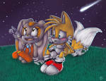 Staring at the stars :Cream n Tails: by Mitzy-Chan