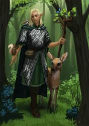 Druid by SrIonart