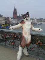 Finished Wolf Fursuit by zyxwen