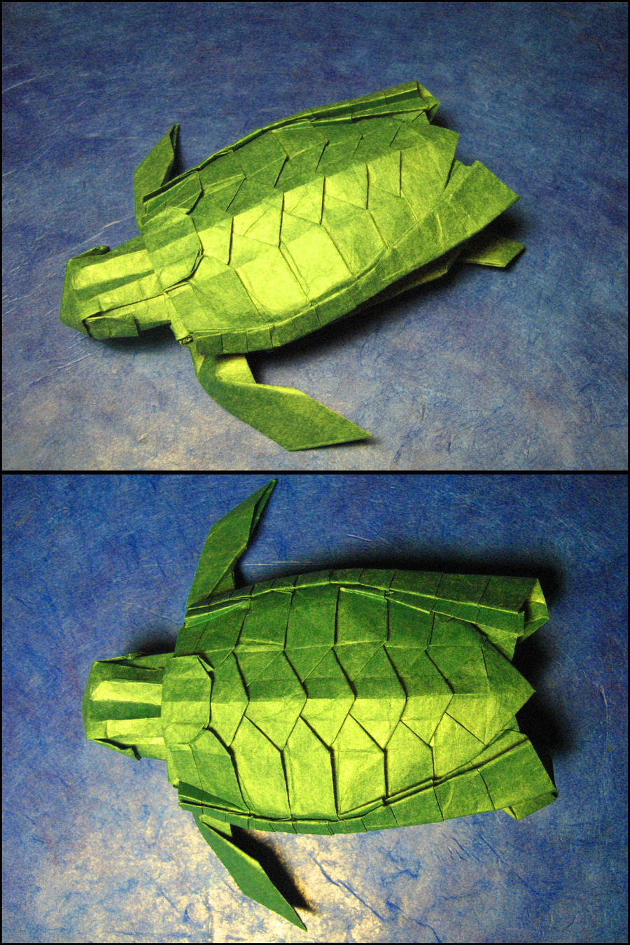 Origami Sea Turtle By Lexar On Deviantart Fireworks Diagram