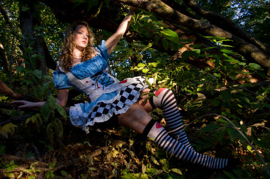 Alice In Wonderland: Rest